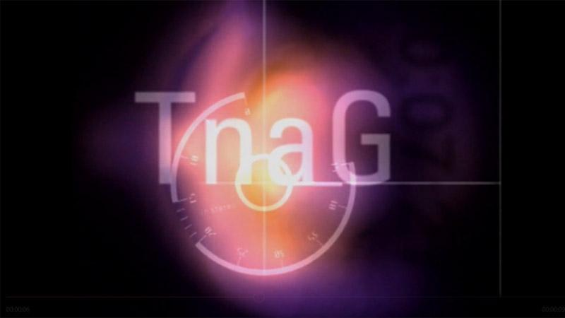 Aitheantas TnaG 1996